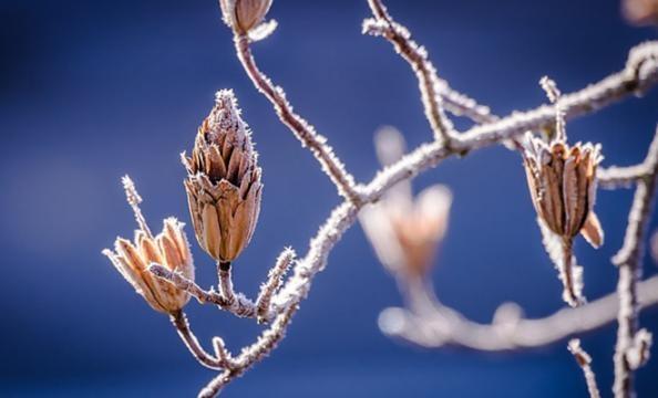 Abruzzo ancora al gelo: breve pausa domani, poi tornano maltempo e nevicate