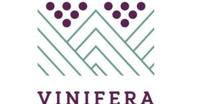 Vinifera, il Salone dei vini regionali dell'arco alpino