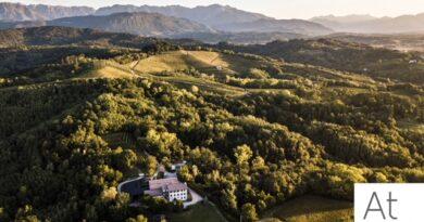 Aquila del Torre, nuovo e-shop con degustazione grandi vini e prodotti bio del Friuli